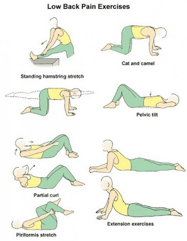 best yoga poses for lower back pain XNKF0SmD