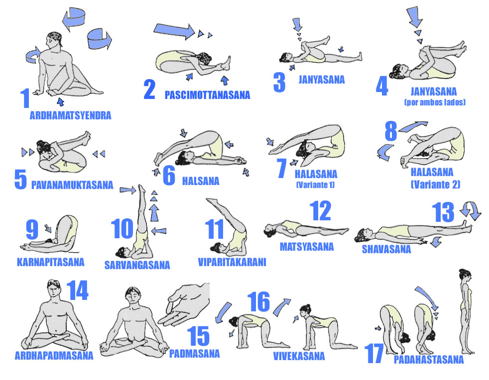 hatha yoga poses beginners aIH3o2Tt