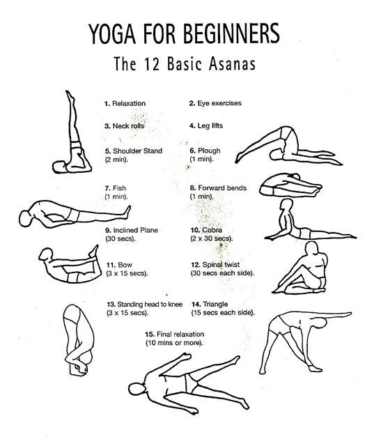 hatha yoga poses beginners V9tCkTkT