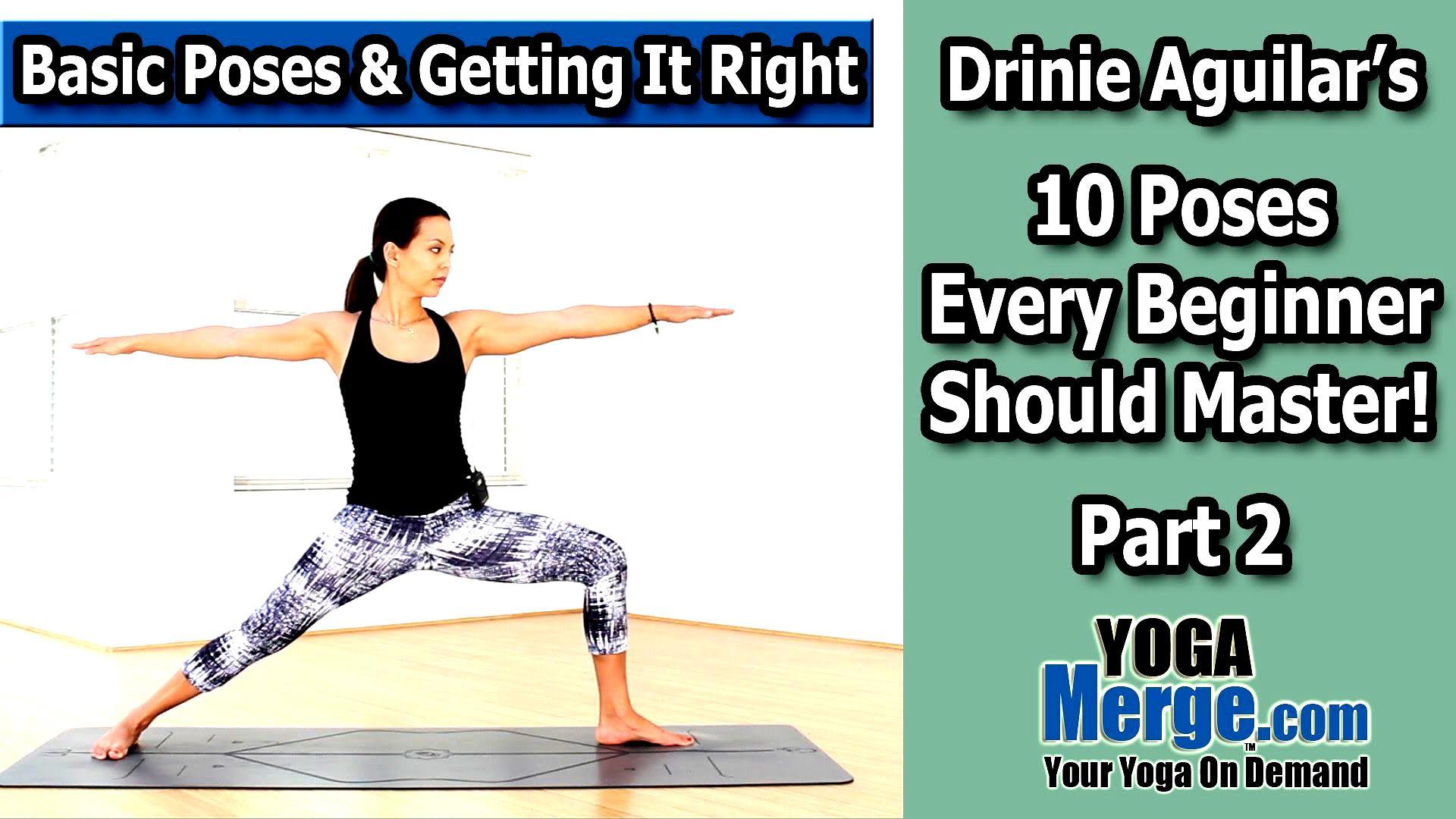 Basic Yoga Poses For Beginners Video