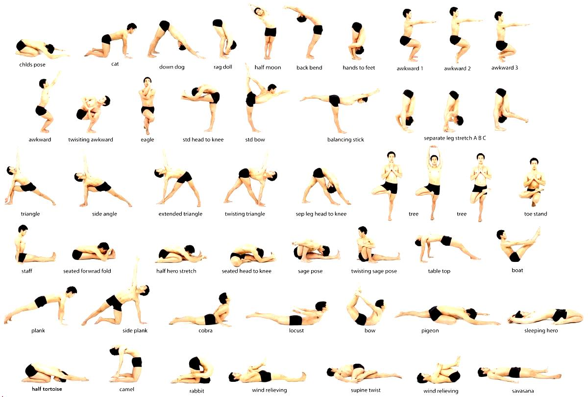 Vinyasa Yoga Poses For Weight Loss | Work Out Picture Media