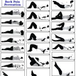 Yoga Poses For Back Pain Relief Exercise