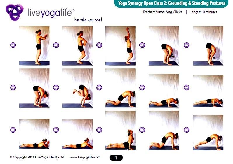 Yoga Synergy Open Class