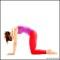 Cat Yoga Pose – Core Yoga Poses