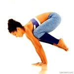 Crane (Crow Pose) Yoga Poses
