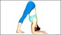 Dolphin Pose – Core Yoga Poses