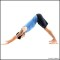 Downward-Facing Dog – Forward Bend Yoga Poses