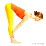Standing Half Forward Bend – Forward Bend Yoga Poses