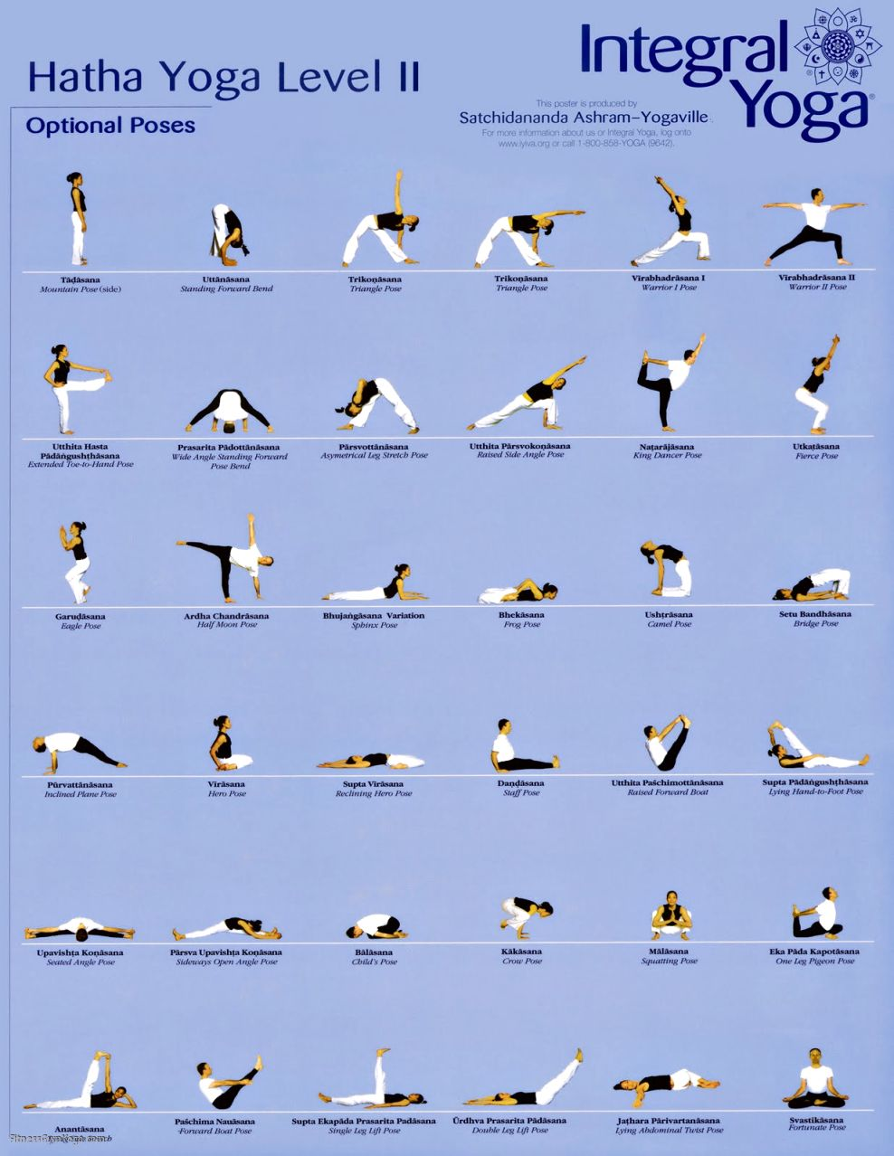 Yoga Hatha Poses | Work Out Picture Media