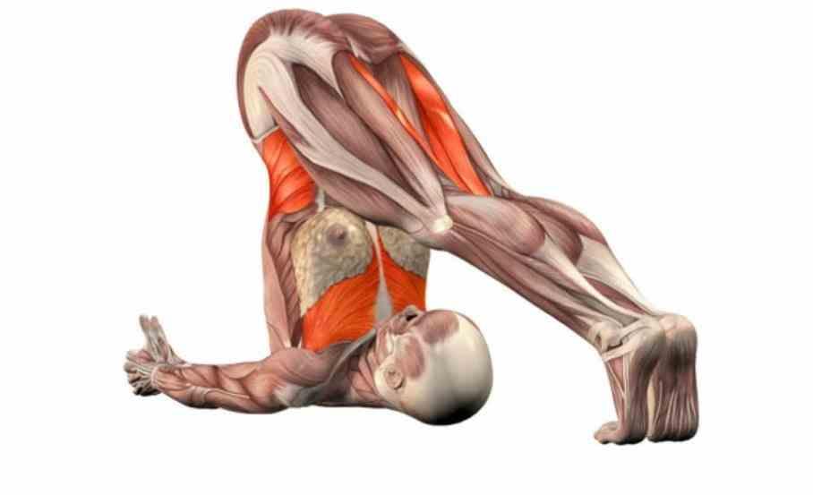 Poses Arm Balances Advanced Yoga Pictures