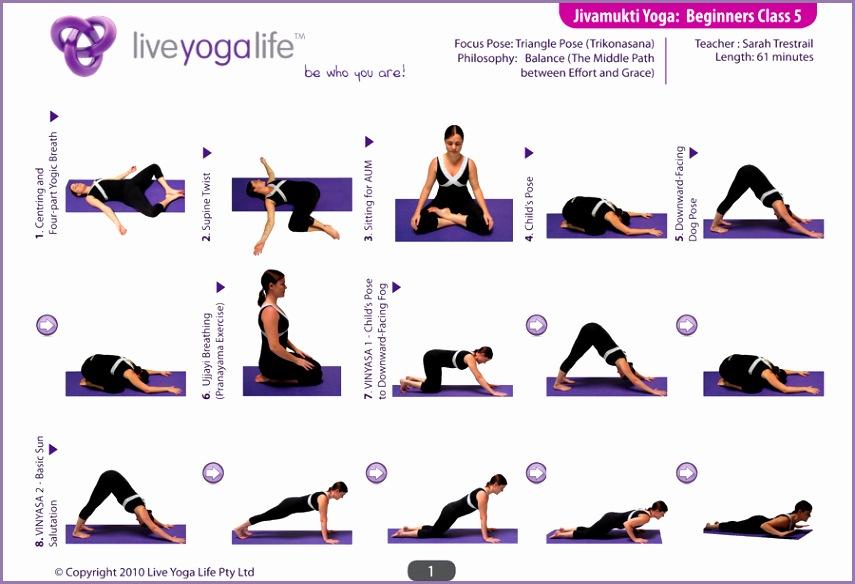 Jivamukti Yoga Beginners Class 5 1