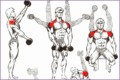 6 Bodybuilding Exercises Pictures and Names