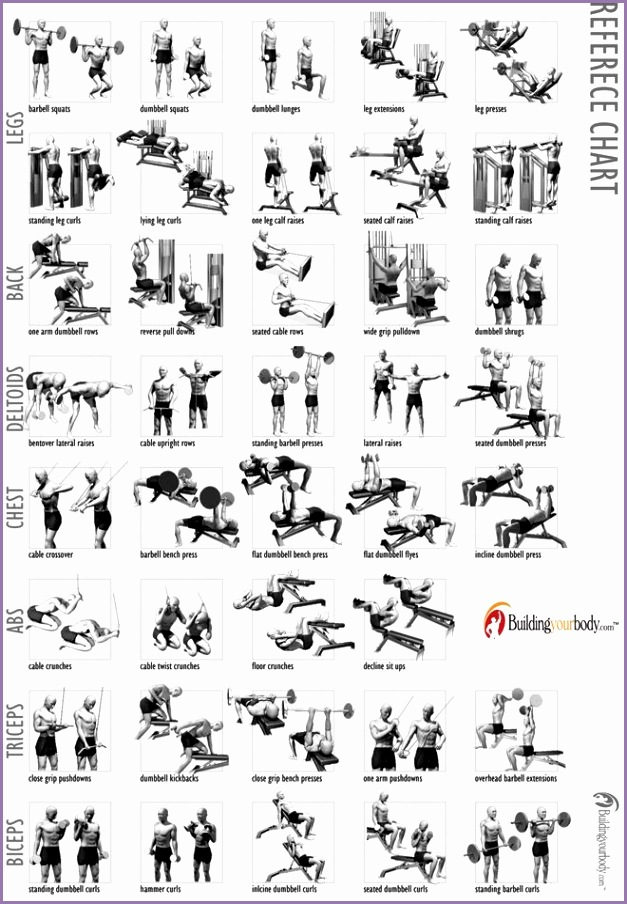Fitness is a critical part of being healthy in life You can live a healthier and more enjoyable life when you are physically fit If you want to b…
