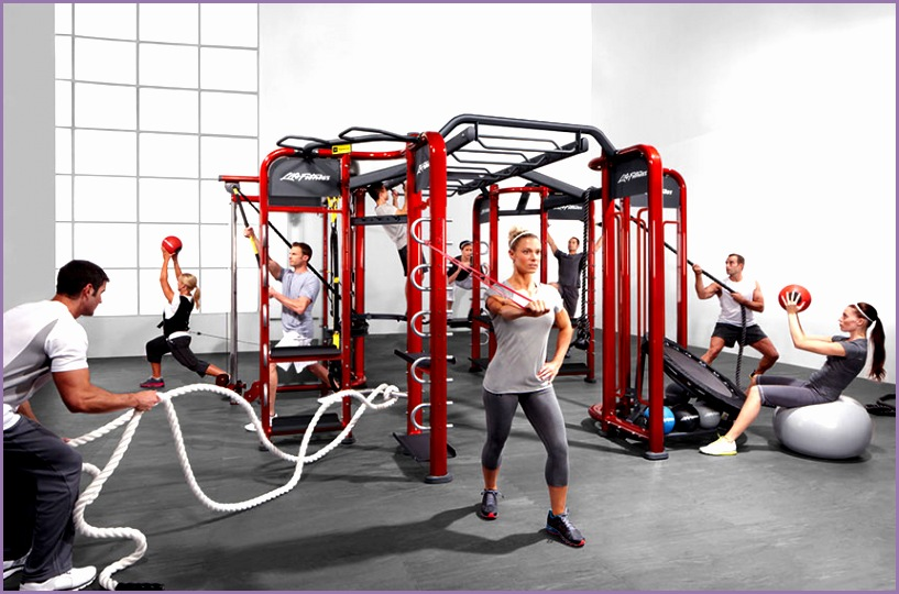 Life Fitness Synrgy Performance Training