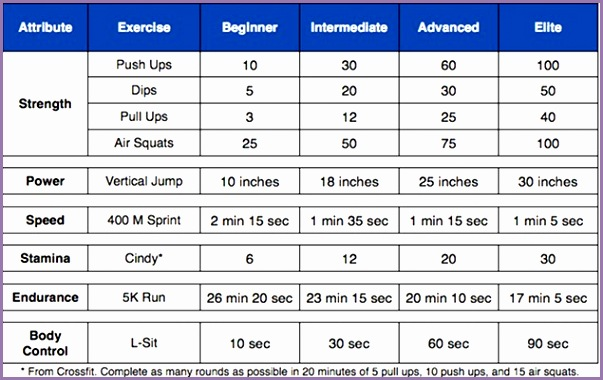 Fitness Test Standards for Males