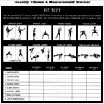 5 Fitness Test Insanity