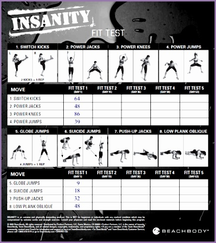 Insanity Fit Test Worksheet