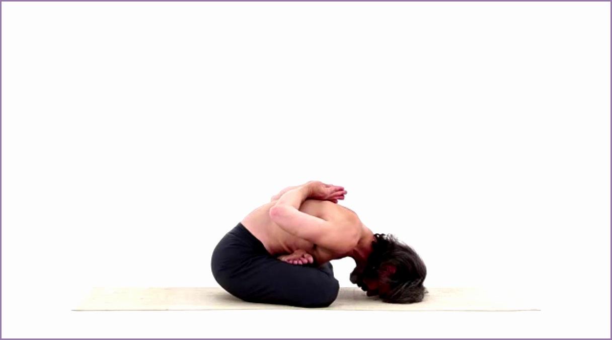 Yoga Mudra Yoga Mudra Asana