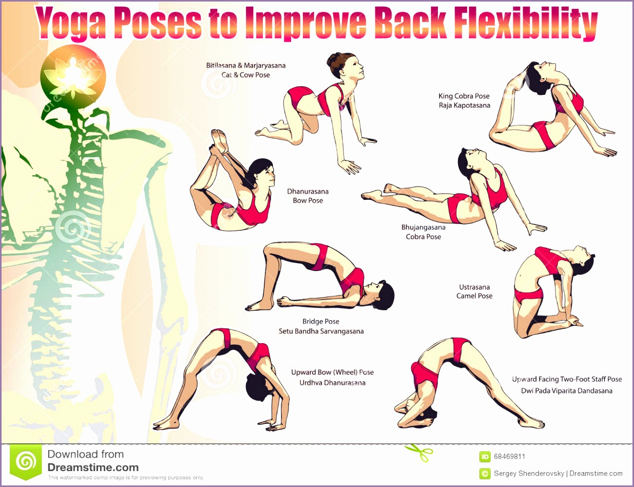 Royalty Free Vector Download Yoga Poses To Improve Back Flexibility