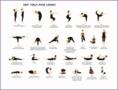 5  Yoga Positions