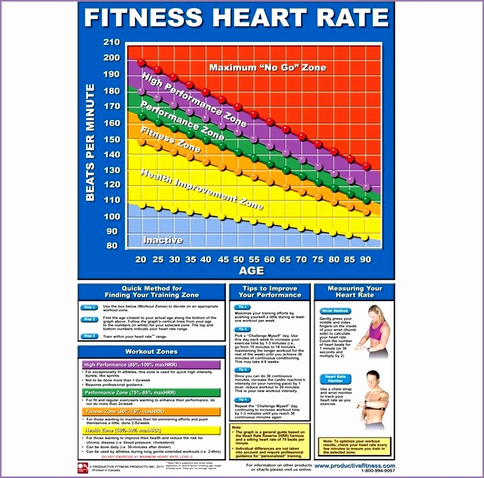 Productive Fitness Poster Series Training Heart Rate Chart