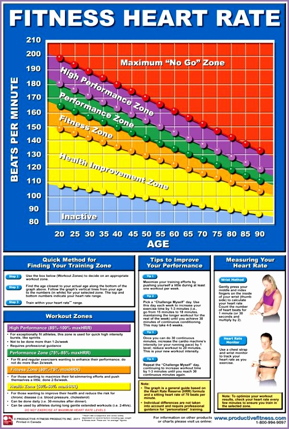 Calculate your heart rate training zone at a glance using our great Heart Rate Chart