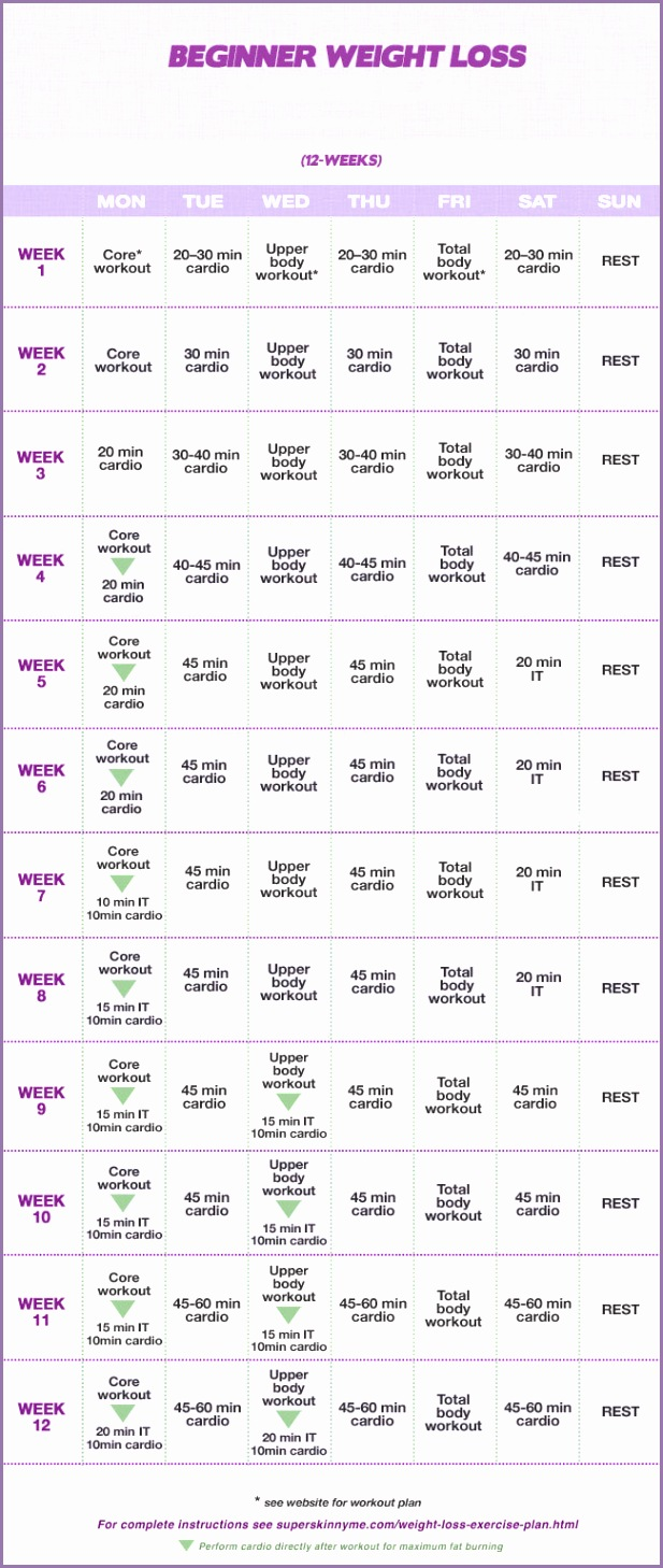 12 Week Beginner Weight Loss WORKOUT PLAN