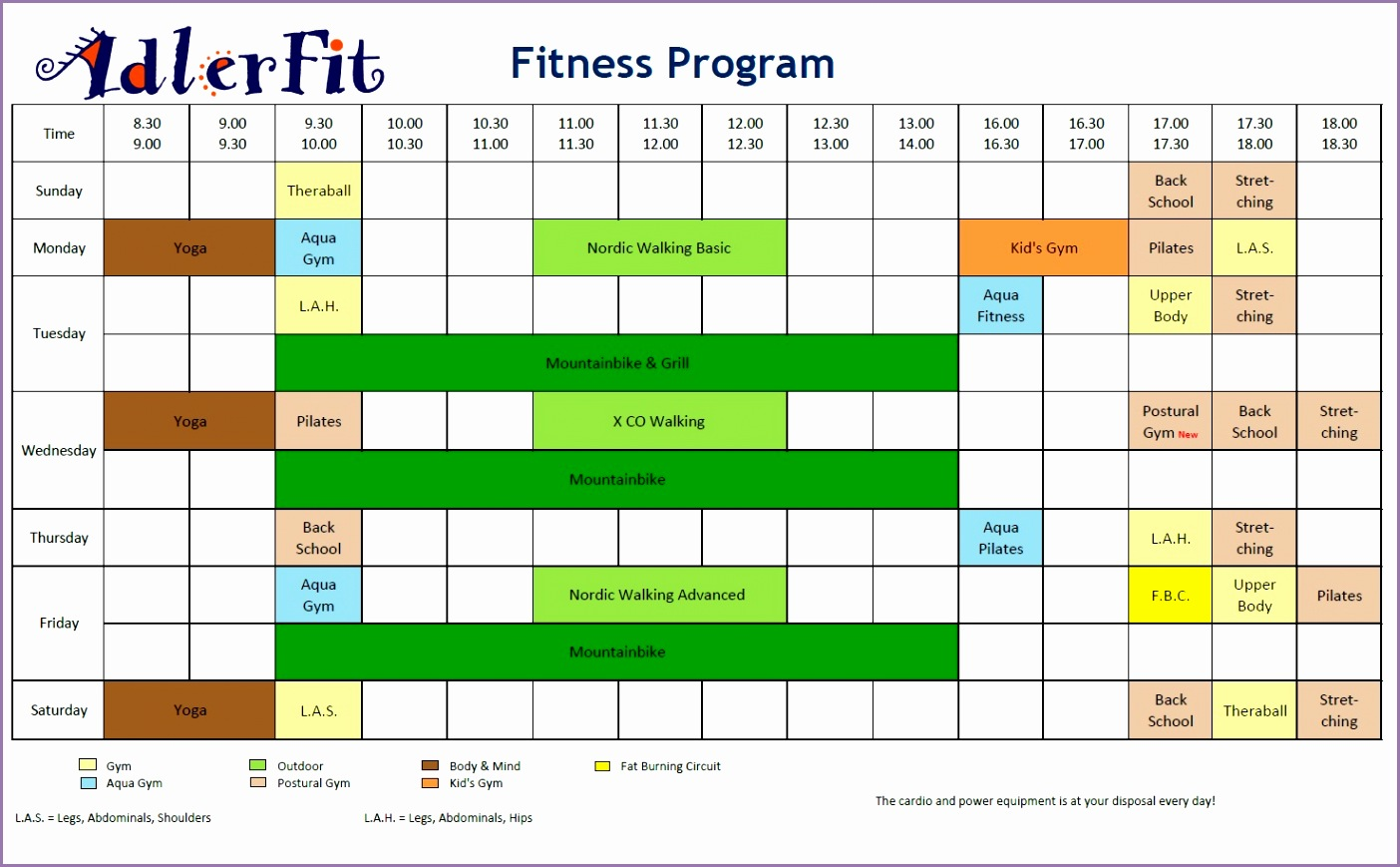 fitness program summer 2011