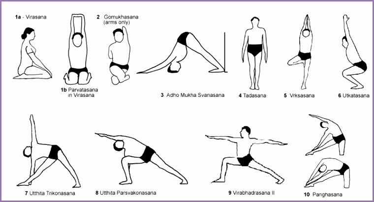 In practice Iyengar yoga focuses particularly on three aspects Correct body alignment allows the body to develop harmoniously in an anatomically correct