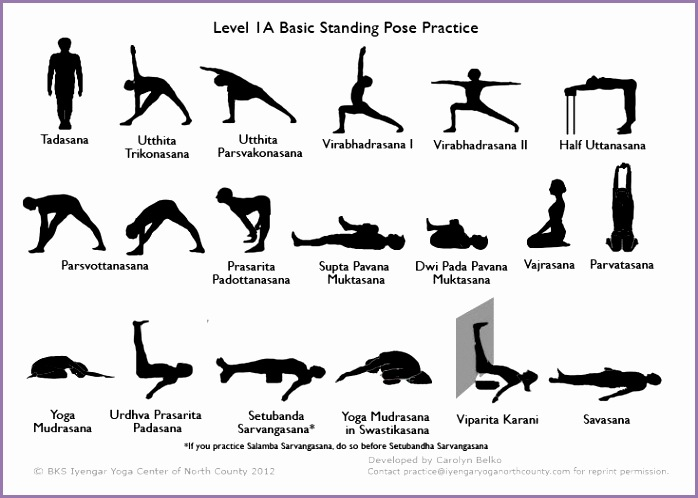 Iyengar Home Practice Sequence Level 1A others on this site