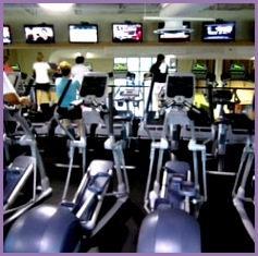 of Lifestyle Family Fitness Saint Petersburg FL United States Cardio