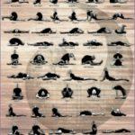 5 Yin Yoga asanas