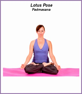 Sit on the floor with your legs extended spine straight and arms resting at your sides This is Seated Staff Pose Dandasana