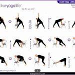5  Chair Yoga Poses for Seniors