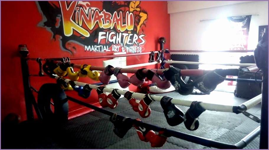 places to learn martial arts in malaysia