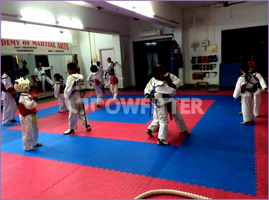 v l academy of martial arts tardeo