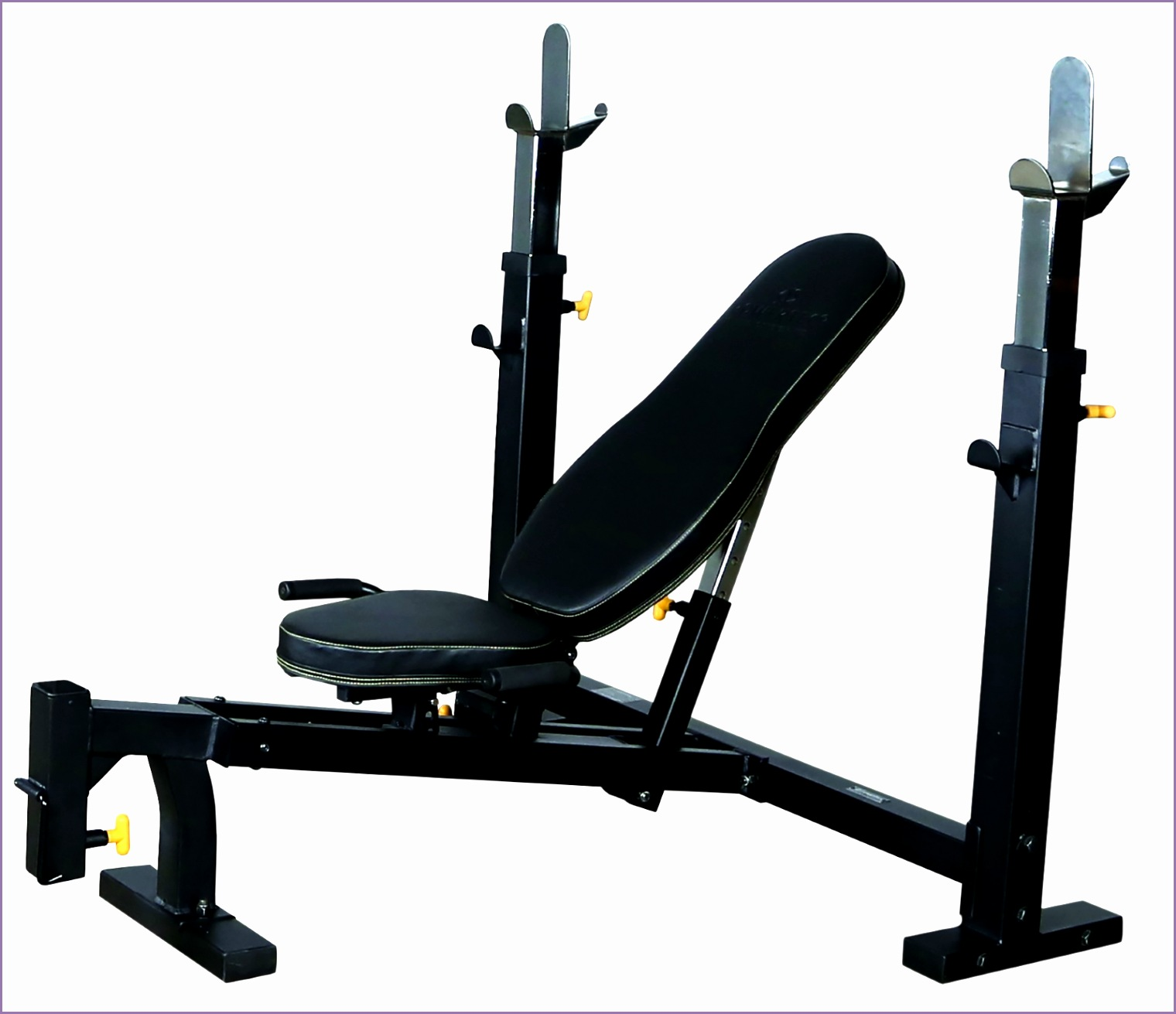 powertec workbench olympic bench