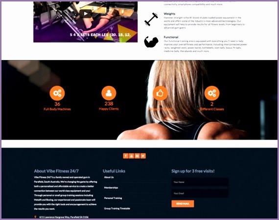 vibe fitness 247 website design
