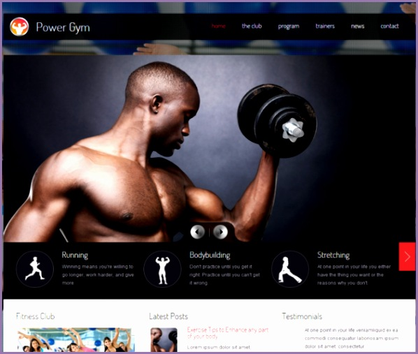 17 robust fitness themes for