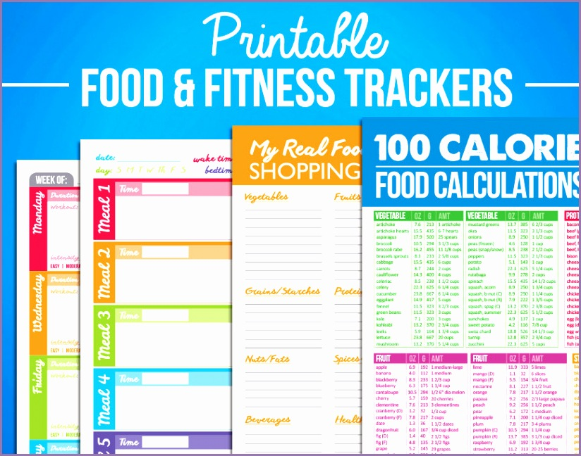 printable food fitness diary journal