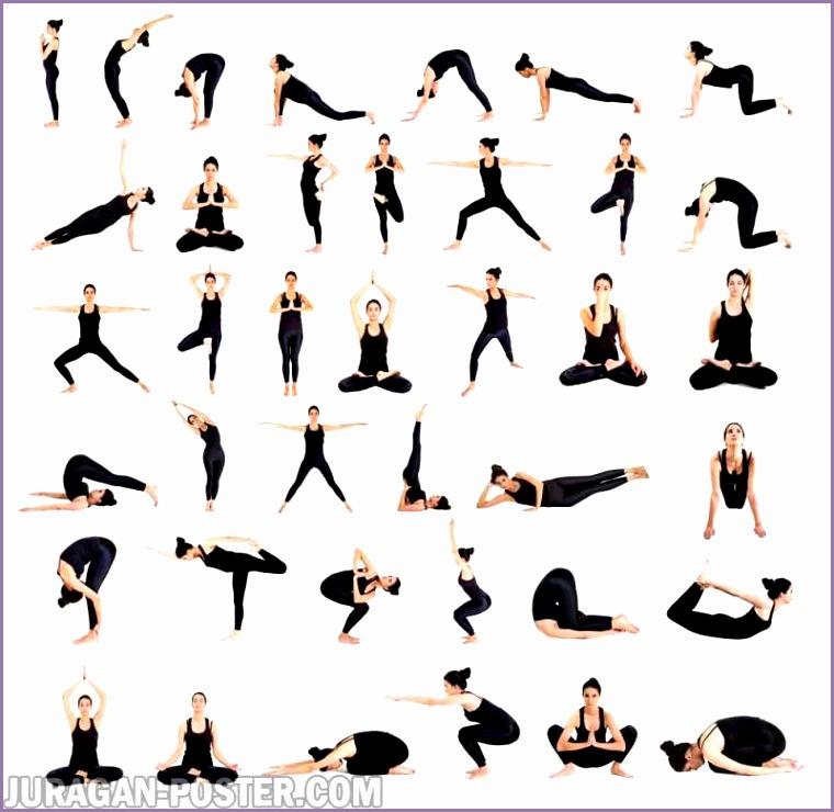 jual poster gambar pose yoga dan asanas