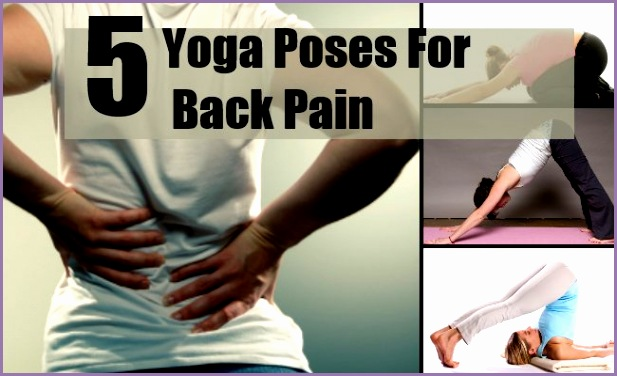 top 5 yoga poses for back pain