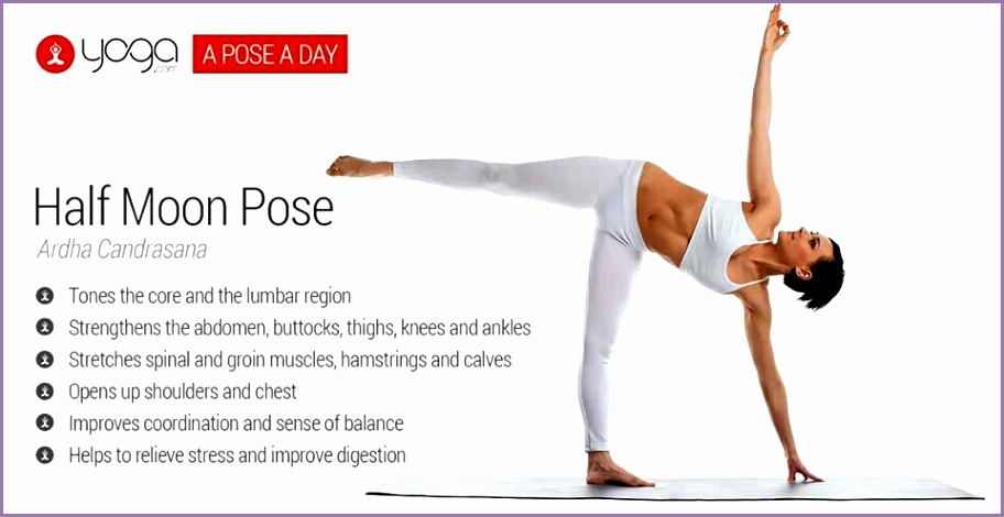 8 Half Moon Pose Yoga - Work Out Picture Media - Work Out ...