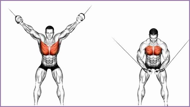 gyne astia exercises