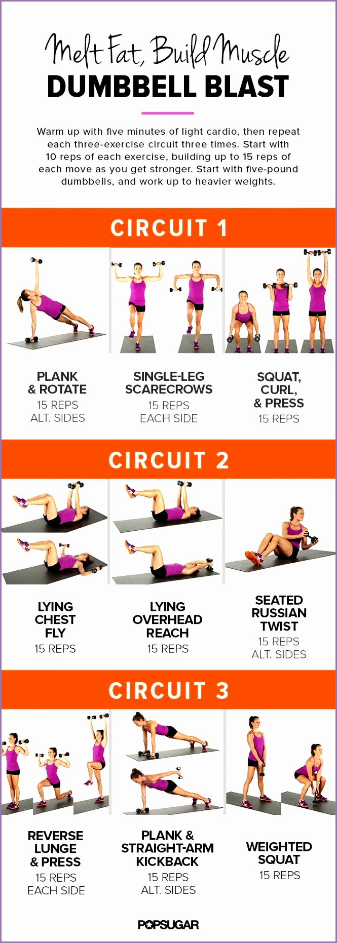 Printable Workout Full body Dumbbell Circuit