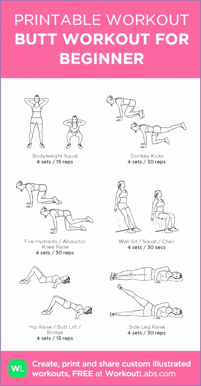 trx workout pdf