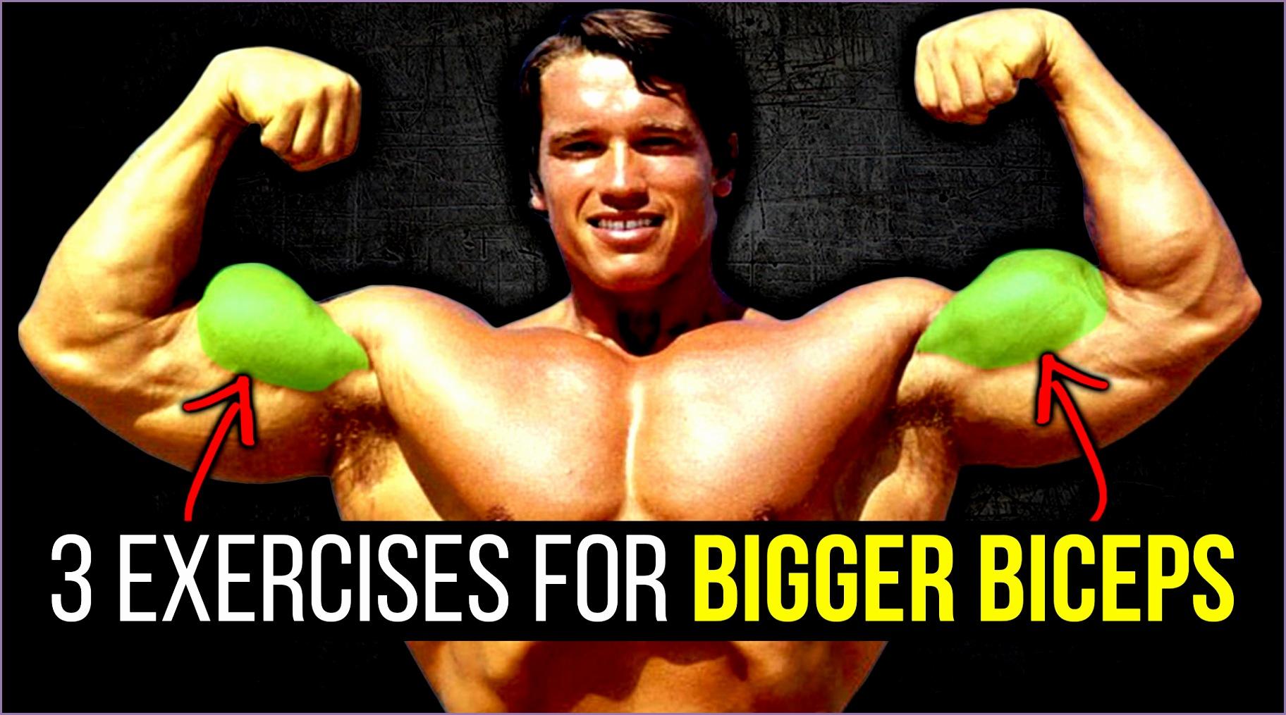 bigger biceps guaranteed killer workout for bigger biceps