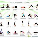 7 Basic Yoga Poses