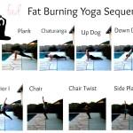 Easy Beginner Yoga Poses
