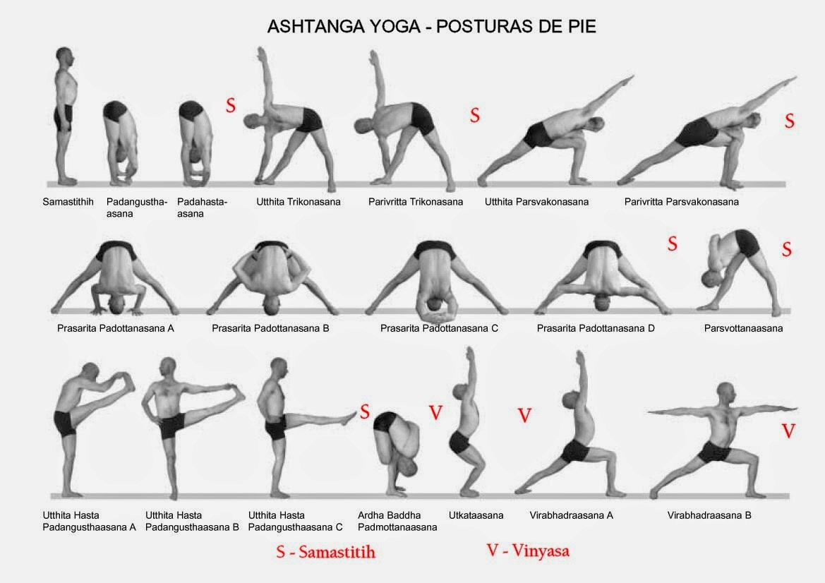 Basic Yoga Postures Pictures | Sport Fatare
